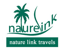 Nature Link Travel